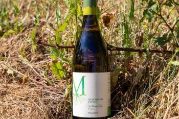 Photo for: Montinore Estate's Pinot Gris crowned best of 2021