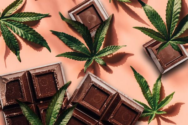 Photo for: 10 Cannabis Chocolates worth trying