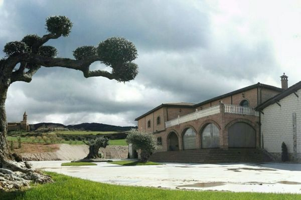 Photo for: Bodegas Alvia - Bringing you award winning wines from La Rioja, Spain